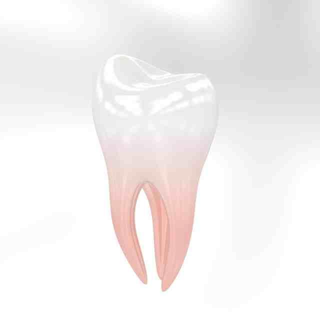 Zahnschmuck | Zahn