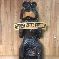 What you need to know about visiting Great Wolf Lodge