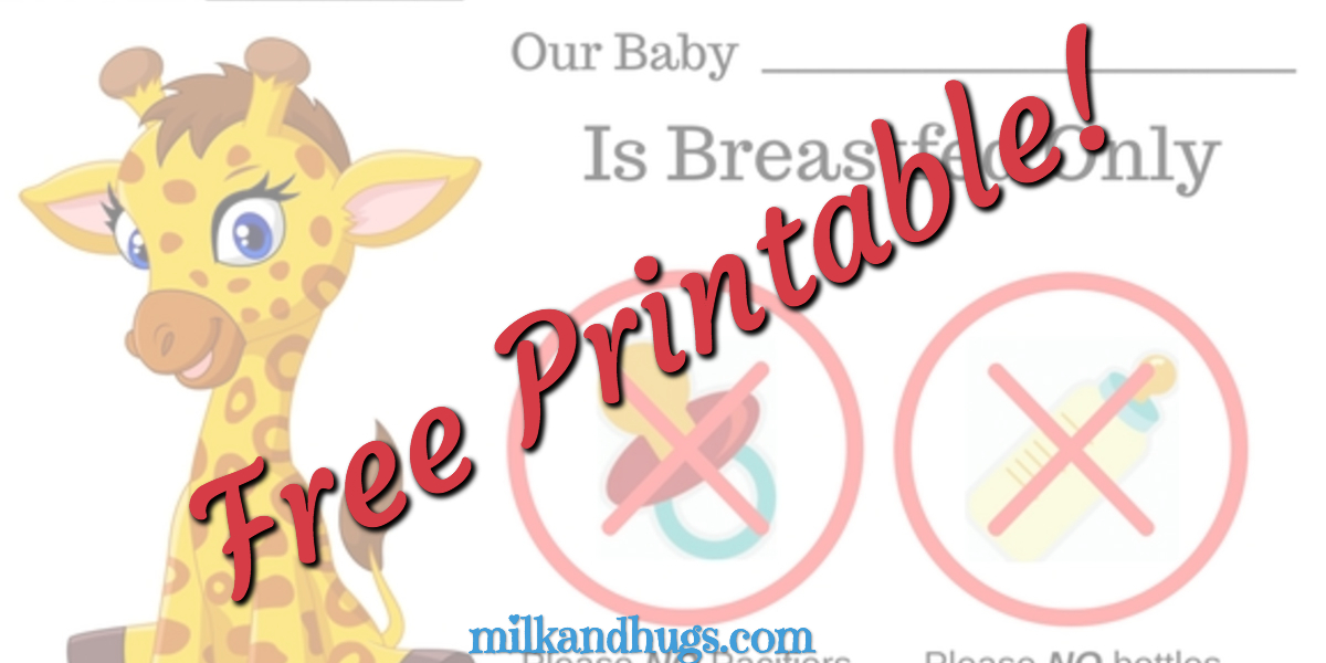 Need a Free Breastfeeding Plan Bassinet Sign for your facility delivery? Here are two FREE PDF Versions you can print and keep now