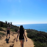 Some Photos From Torrey Pines State Park