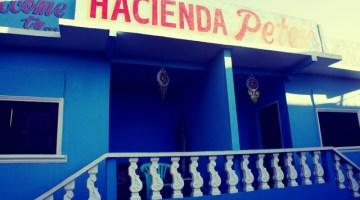 hacienda-peter-San Juan-La Union-Philippines