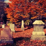 Mount-Pleasant-Cemetery-fall
