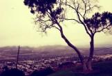 grant-park-ventura-view