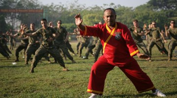 Indonesian martial arts
