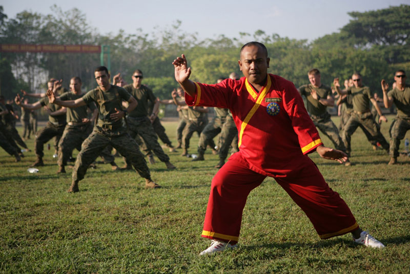 Indonesian martial arts