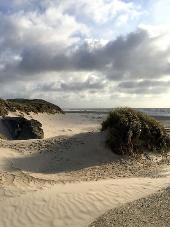 11 Bormose Strand