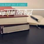 Hitting Rough Spots in School? Nip It In The Bud!