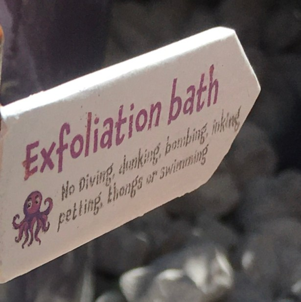 Exfoliation bath No diving, dunking, bombing, inking, petting, thongs or swimming