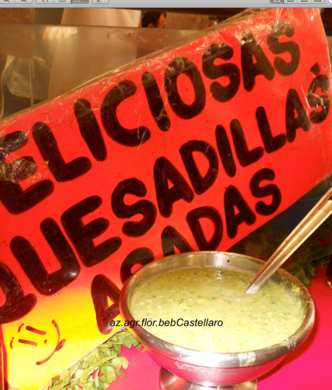 guacamole a Coyacan