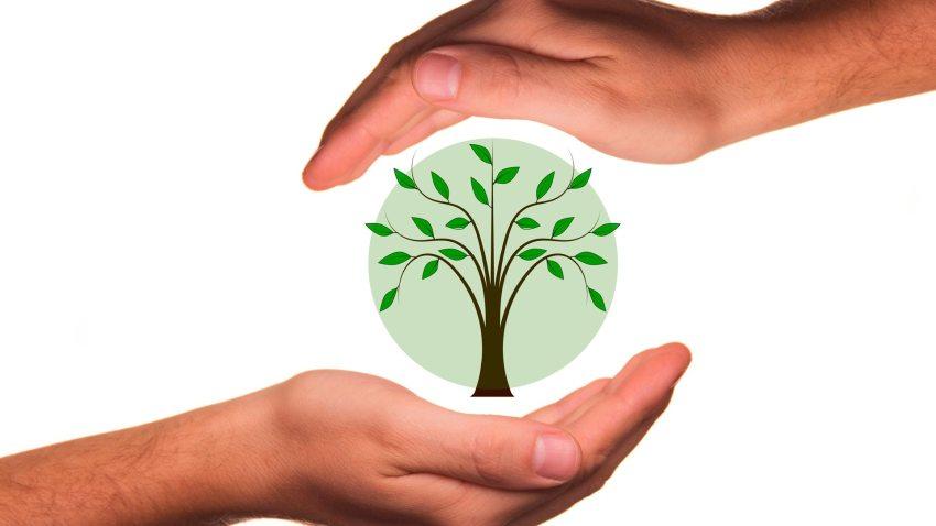 Que es la agricultura ecológica?