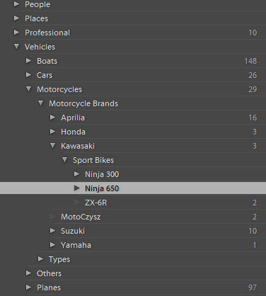 It's easy to see why a Lightroom keyword hierarchy or levels are so powerful. A prime example are vehicles.