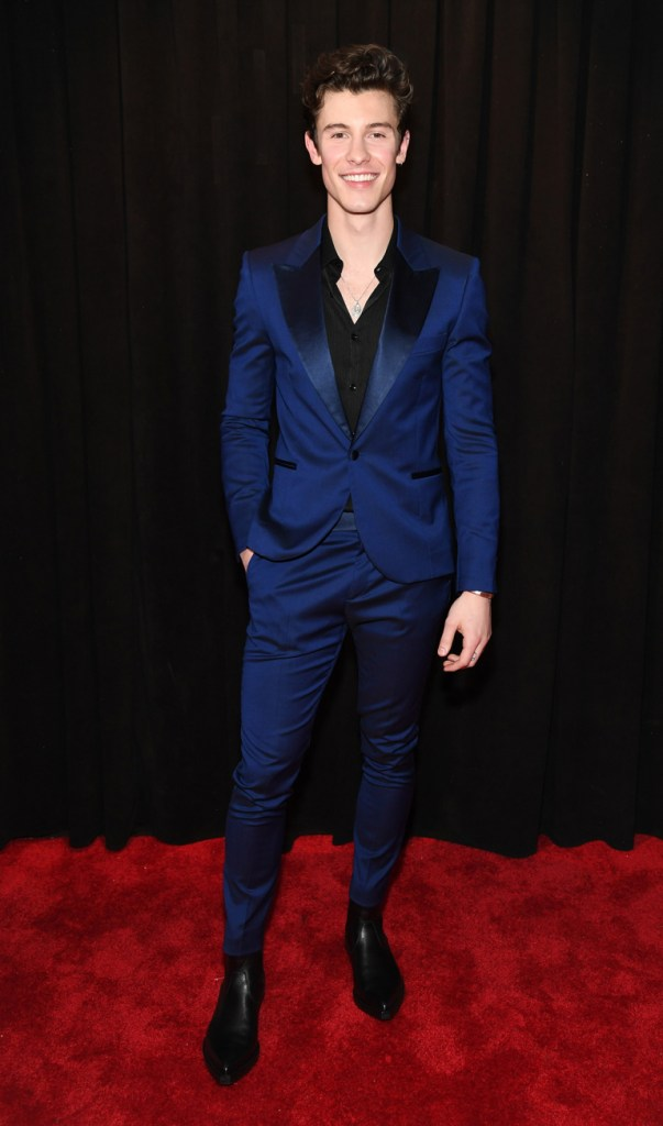 Shawn Mendes at the 2019 Grammys