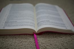 Why My Friend and I Decided to Memorize An Entire Book of the Bible