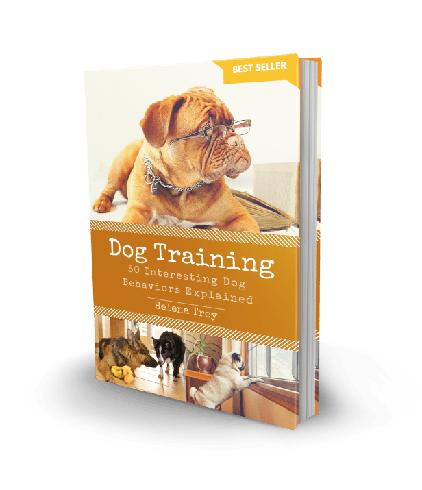 Dog_Training