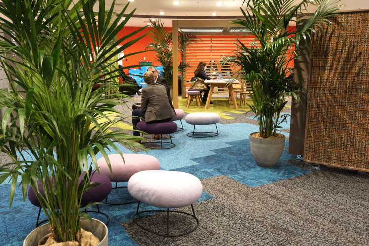 Oliver Heath Design, The Biophilic Office