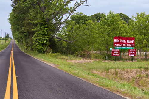 MF_Sign_0010_small_1