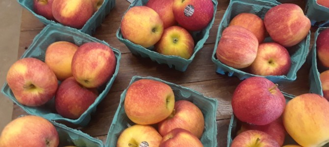 Gala Apples now!  Jonagold Apples available Friday afternoon!  Breakfast on the Porch!