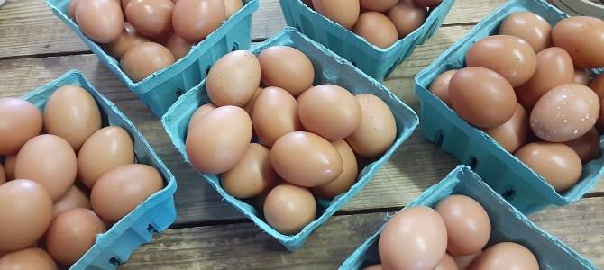 Eggs, Broiler Chickens, Milk, Apples, Winter Squash, Sweet Potatoes