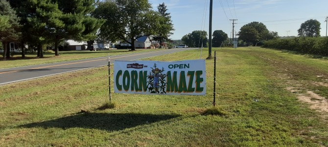 Beautiful Weather for the Corn Maze on Saturday!  Wear boots or old shoes!