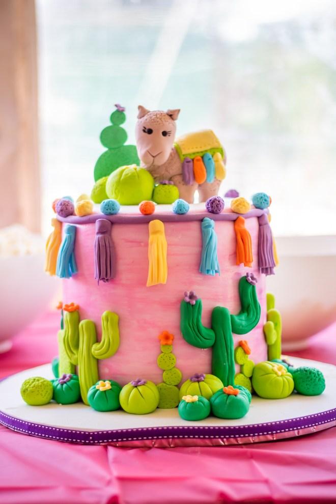 Mikas Ooh La Llama Party