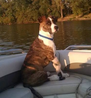 Keating - Boating with Mark
