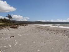 Bruce Maori Beach