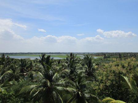 Coconut Gardens Hotel
