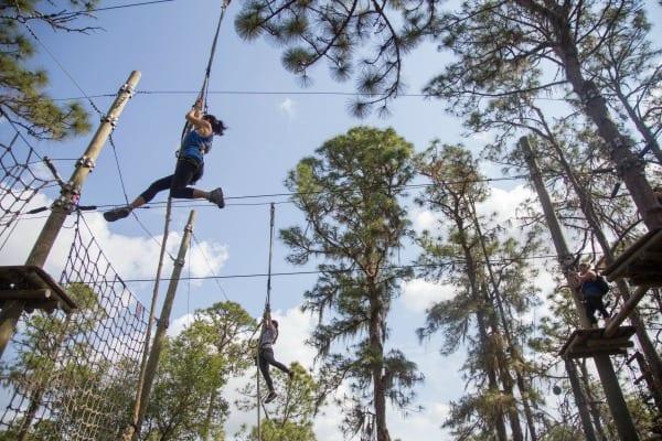 Treeumph in Brooksville Florida