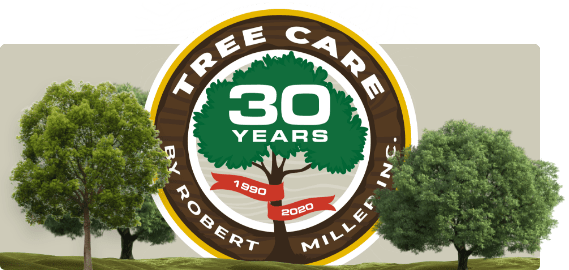 Tree Care by Robert Miller - 30 Year Logo