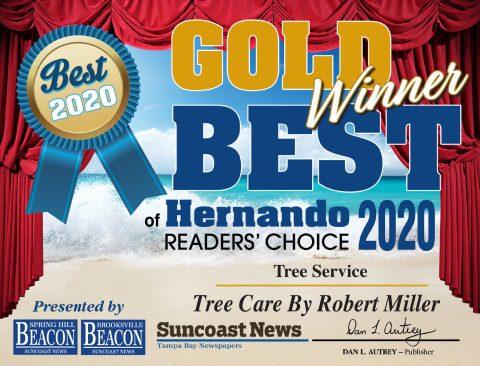 Best Tree Service Hernando County Certificate