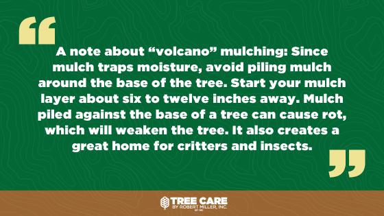 Volcano Mulch quote