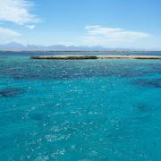 Sortie plongée en Mer Rouge