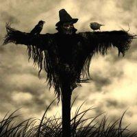 "Buttkickin' Halloween Songs: ""Scarecrow"" -- Beck (2005)"