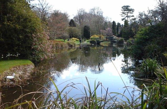 lake-at-burnby-gardens-april