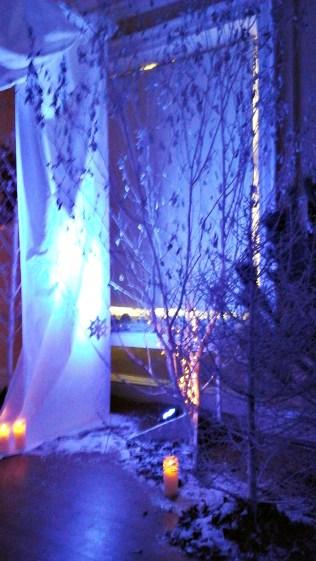 long-gallery-snow-queen-2