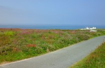 view-at-lands-end