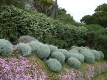 Terrace gardens 2