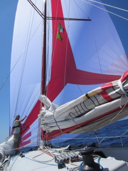 A nice sail...the new 120m2 gennaker