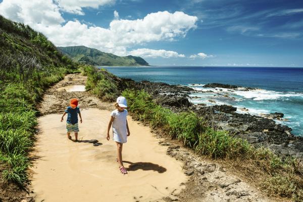 Limited Time: 25% Transfer Bonus on AMEX Membership Rewards Points to Hawaiian Airlines Miles