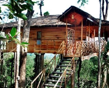 TreeVilla - Exterior, Tranquil, Kerala