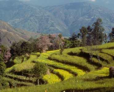 Honeymoon Trek in Nepal