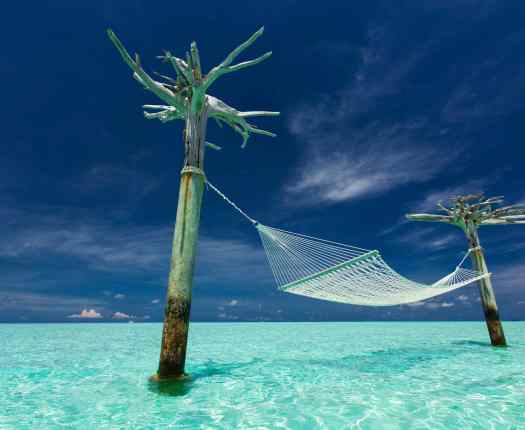 Hammock in the Maldives