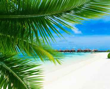 Sri Lanka and the Maldives Honeymoon, Luxury Holidays Luxury Maldives Holidays