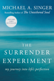 best business books - the surrender experiment