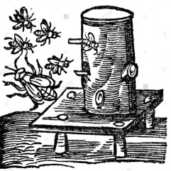 Apiculture/Beekeeping