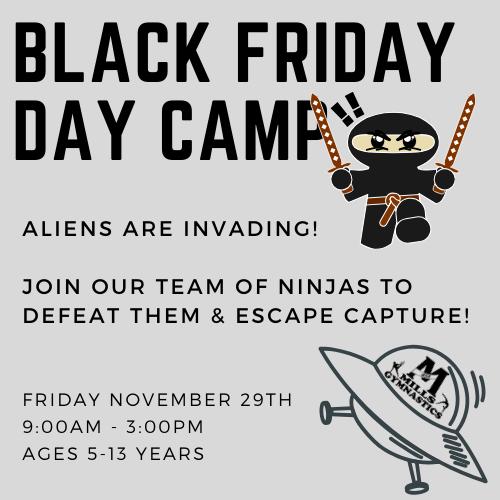 Black Friday Ninja Day Camp