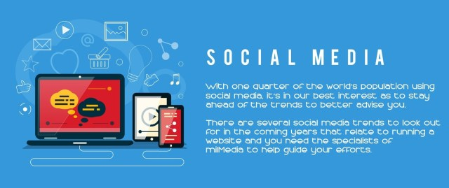 Social Media Services vector image