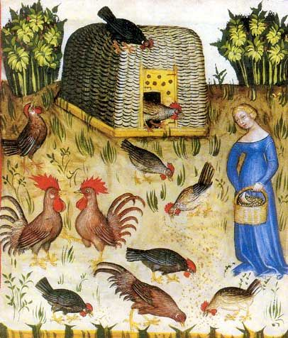 Medieval scene - woman feeding her chickens