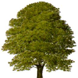 The famed Chestnut Tree logo of Chestnut Lodge Wargames Group.