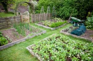 parče zemlje i vrt